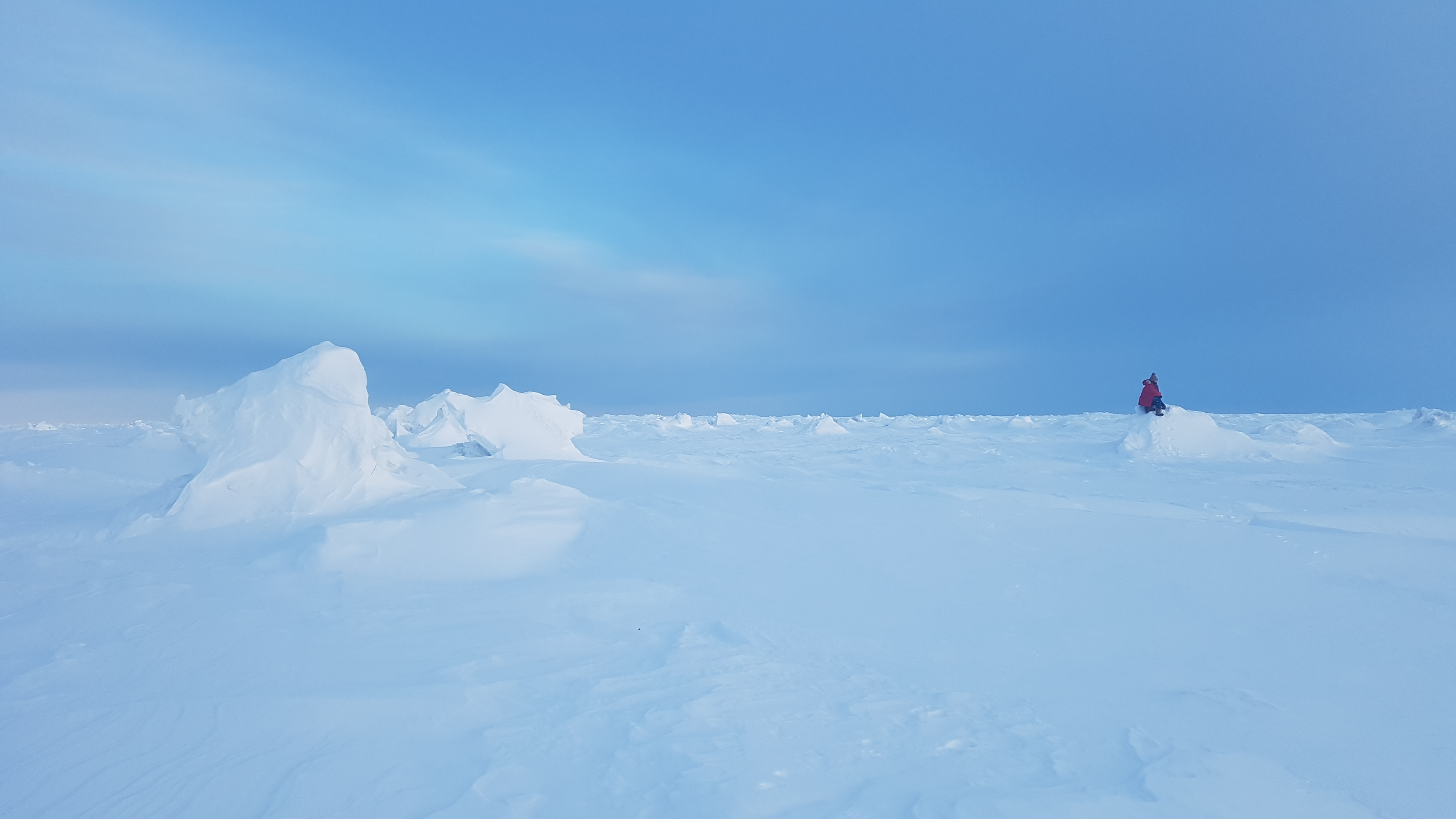 Britt looking out over the Hudson bay sea ice near Churchill Manitoba, Canada